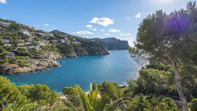 Photo of Mallorcan